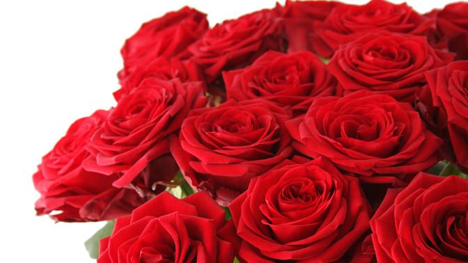 Скидка до 78%. Букет изпионов, премиальных роз, синих орхидей, тюльпанов, ирисов или кустовых роз