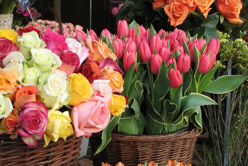 бизнес это цветы картинки букеты роз и тюльпанов протяжении истории здесь